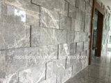 마루 또는 지면 또는 포장하거나 목욕탕 /Wall를 위한 선정된 건축재료 돌 대리석 석판 도와