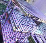 Wand-Unterlegscheibe DMX RGB-LED