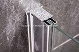 Porte de douche de pivot