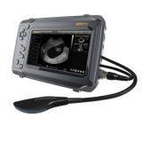 Explorador portable del ultrasonido color portable de B/W del pseudo para el uso veterinario