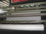 PP 긴 섬유 또는 간결 비 길쌈된 Geotextiles (600G/M2)