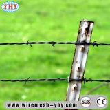 フィールドは金属線の電流を通された有刺鉄線の塀を保護する