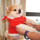 L'animal familier chaud de vêtements de crabot heureux mignon halète le vêtement d'animal familier