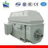 Serie de Ykk, motor asíncrono trifásico de alto voltaje de enfriamiento aire-aire Ykk5602-2-1250kw