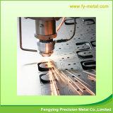 Servizi professionali di taglio del laser del metallo
