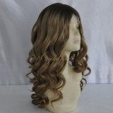 El cabello humano mejor venta de la mujer peluca (PPG-L-01197)