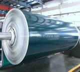 Bande de conveyeur de haute résistance de nourriture de PVC de configuration lustrée