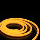 Norme de haute luminosité et de tuba néon LED 120LED/M lumière flexible, 12V/24V Néon led seul côté