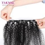 Yvonne afro-brésilien Kinky Curly Clip humaine dans les Extensions de cheveux 7PCS/Set