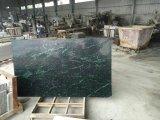 훈장 벽 지면 도와를 위한 대중적인 상록 인도 녹색 대리석