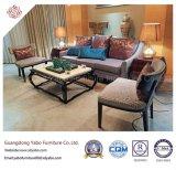 Muebles abundantes del hotel para la sala de estar con la mesa de centro (YB-D-25)