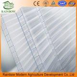 농업 저가 온실 폴리탄산염 온실
