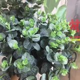 Piante di alta qualità e fiori artificiali Bush di Gu-Jy912231905