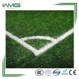 茎を持つMonofilのフットボールの総合的な草