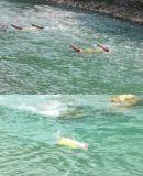 Turbina de flutuação 3kw da água da cabeça zero do rio