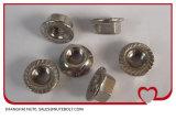 스테인리스 304 316 Hexagon Nut with 플랜지 DIN6923 ANSI 3/8-16