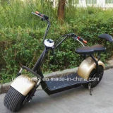 Nuovo principe Harley Electric Bicycle di disegno con Ce