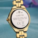 Reloj de encargo de la aleación del regalo del reloj de la marca de fábrica (WY-019D)