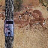 Spiel-Kamera 16MP 1080P HD mit IP56 imprägniern Tierrotwild-Jagd-Kamera
