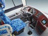 Sunlong 31-50 Sitzmittlerer neuer Bus Slk 6872