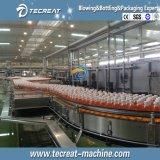 Chaîne de production de mise en bouteilles carbonatée de machine de remplissage de boisson non alcoolique de bouteille automatique
