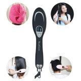 2 em 1 ar quente que denomina o secador de cabelo do Straightener do ferro