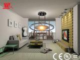 복장에 있는 아크릴 반지를 가진 새로운 디자인된 천장 램프