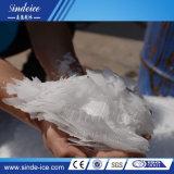La Chine Energy Saving 10t conteneur Machine à glaçons Flake Machine à glace