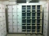 Governo di plastica dell'armadio con 4 file
