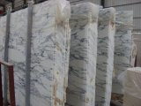 Естественный каменный белый строительный материал Arabescato Vagli мраморный