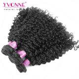 マレーシアのカーリーヘアーを編むイボンヌの毛の最上質のブラジルの人間の毛髪