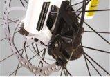 성인을%s Aluminimu 합금 경량 도시 전기 자전거