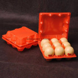 Fruta plástica de PP/PVC/Pet/fornecedor de empacotamento da caixa parte superior do alimento