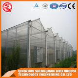 Handelsstahlrahmen-Aluminiumprofil PC Blatt-Gewächshaus für Gemüse