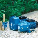 Material de plástico Jardín de la serie P de jet-set de bomba de agua