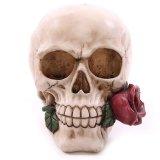 Скелет Lifesize модели смолаы реплики черепа 1:1 людской анатомический медицинский