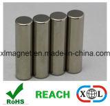 Pole-Markierungs-runder Magnet