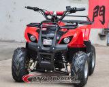 新しいセリウムの公認500With800With1000W電気クォードのバイク(ATV)