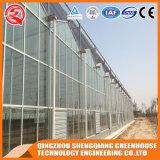 Casa verde de vidro da flor vegetal pré-fabricada comercial
