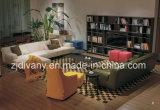 Mobília moderna do sofá da sala de visitas do estilo europeu (D-79)