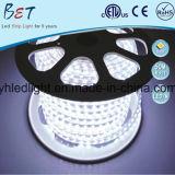 Striscia chiara di RGB LED della decorazione di natale della flessione 60LED/M di ETL 5050