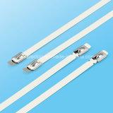 Spezielle Entwurfs-Zunge-Kopf-Edelstahl Selbst-Verschluss Kabelbinder