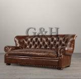 Sofà americano di stile di vendita della mobilia calda del salone