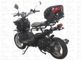 Curso elét. do disco EPA do CDI da motocicleta de Zhenhua Pmz50-10 50cc