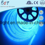 ETL 5050 가벼운 코드 60LED/M 크리스마스 훈장 RGB LED 지구