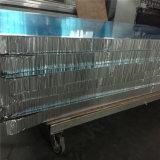 Panneau en aluminium de nid d'abeilles pour la partition (HR09)