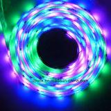 волшебный полного цвета 12V IC 5050 СИД свет 1903 прокладки