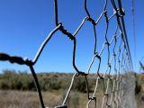 金網の網/PVCによって塗られる電流を通された六角形の金網/低価格の金網の網