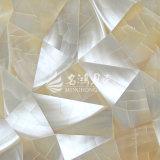 Shell van Trochus de Onregelmatige Tegel van het Mozaïek van de Driehoek