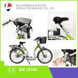 E-Bicicletas Trekking da qualidade barata e boa de Rebeco